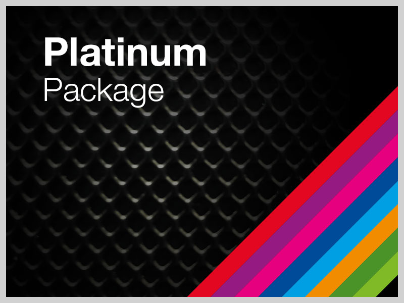 Platinum Package (Subsite Sponsorship)